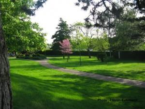 une photo du parc